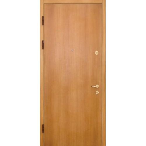 Дверь СТАНДАРТ ДБС 2-01