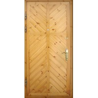 Дверь ДБС 2-10